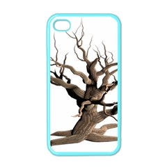 Tree Isolated Dead Plant Weathered Apple Iphone 4 Case (color) by Nexatart