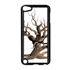 Tree Isolated Dead Plant Weathered Apple Ipod Touch 5 Case (black) by Nexatart