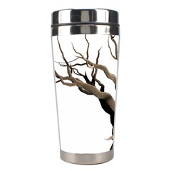 Tree Isolated Dead Plant Weathered Stainless Steel Travel Tumblers