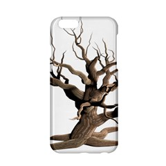 Tree Isolated Dead Plant Weathered Apple Iphone 6/6s Hardshell Case by Nexatart