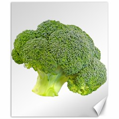 Broccoli Bunch Floret Fresh Food Canvas 8  X 10  by Nexatart