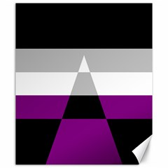 Dissexual Flag Canvas 20  X 24