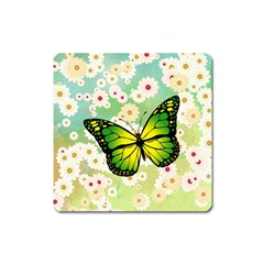 Green Butterfly Square Magnet by linceazul