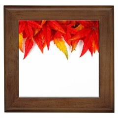 Abstract Autumn Background Bright Framed Tiles by Nexatart