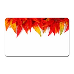 Abstract Autumn Background Bright Magnet (rectangular) by Nexatart