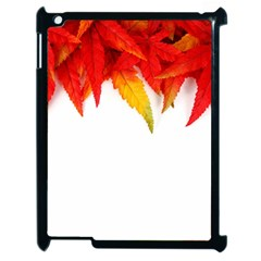 Abstract Autumn Background Bright Apple Ipad 2 Case (black) by Nexatart