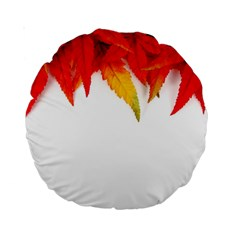 Abstract Autumn Background Bright Standard 15  Premium Round Cushions by Nexatart