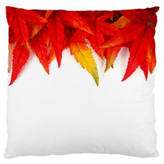 Abstract Autumn Background Bright Large Flano Cushion Case (two Sides)
