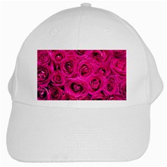 Pink Roses Roses Background White Cap by Nexatart