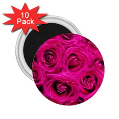 Pink Roses Roses Background 2 25  Magnets (10 Pack)  by Nexatart