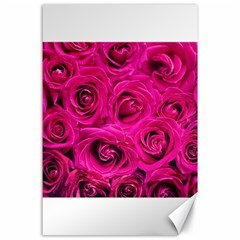 Pink Roses Roses Background Canvas 24  X 36  by Nexatart