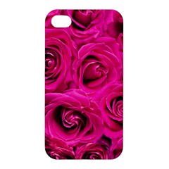 Pink Roses Roses Background Apple Iphone 4/4s Premium Hardshell Case