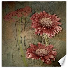 Flowers Plant Red Drawing Art Canvas 20  X 20   by Nexatart