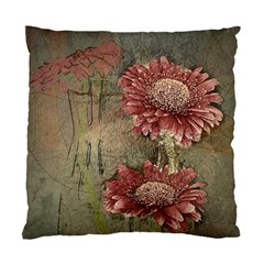 Flowers Plant Red Drawing Art Standard Cushion Case (one Side) by Nexatart