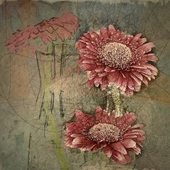 Flowers Plant Red Drawing Art Magic Photo Cubes by Nexatart