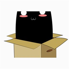 Black Cat In A Box Canvas 12  X 18   by Catifornia