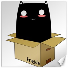 Black Cat In A Box Canvas 20  X 20   by Catifornia