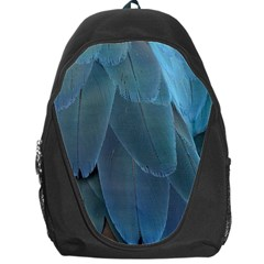 Feather Plumage Blue Parrot Backpack Bag by Nexatart