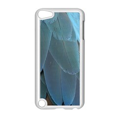 Feather Plumage Blue Parrot Apple Ipod Touch 5 Case (white)