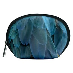 Feather Plumage Blue Parrot Accessory Pouches (medium)  by Nexatart