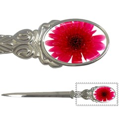Flower Isolated Transparent Blossom Letter Openers