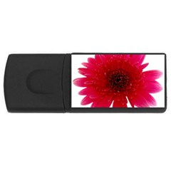 Flower Isolated Transparent Blossom Usb Flash Drive Rectangular (4 Gb) by Nexatart