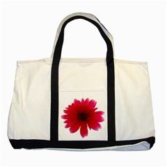 Flower Isolated Transparent Blossom Two Tone Tote Bag