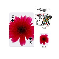 Flower Isolated Transparent Blossom Playing Cards 54 (mini)