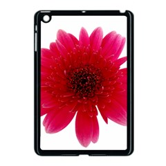 Flower Isolated Transparent Blossom Apple Ipad Mini Case (black) by Nexatart