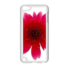 Flower Isolated Transparent Blossom Apple Ipod Touch 5 Case (white)
