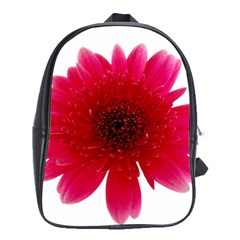 Flower Isolated Transparent Blossom School Bags (xl)  by Nexatart