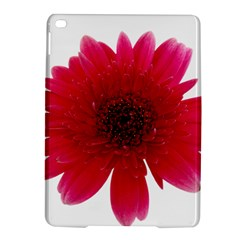 Flower Isolated Transparent Blossom Ipad Air 2 Hardshell Cases by Nexatart