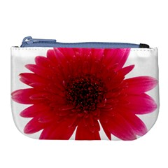 Flower Isolated Transparent Blossom Large Coin Purse