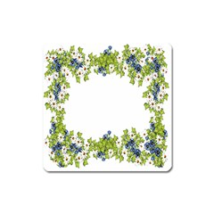 Birthday Card Flowers Daisies Ivy Square Magnet