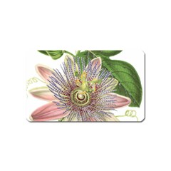 Passion Flower Flower Plant Blossom Magnet (name Card)
