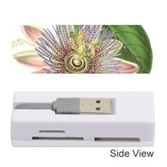 Passion Flower Flower Plant Blossom Memory Card Reader (stick)  by Nexatart