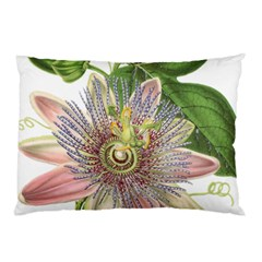 Passion Flower Flower Plant Blossom Pillow Case (two Sides) by Nexatart