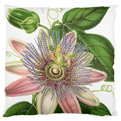 Passion Flower Flower Plant Blossom Large Cushion Case (one Side) by Nexatart