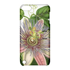 Passion Flower Flower Plant Blossom Apple Ipod Touch 5 Hardshell Case With Stand by Nexatart