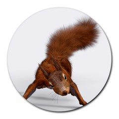 Squirrel Wild Animal Animal World Round Mousepads by Nexatart