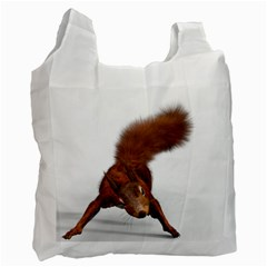 Squirrel Wild Animal Animal World Recycle Bag (two Side)  by Nexatart