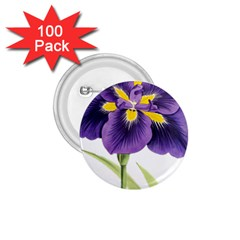 Lily Flower Plant Blossom Bloom 1 75  Buttons (100 Pack)