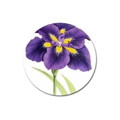 Lily Flower Plant Blossom Bloom Magnet 3  (round)