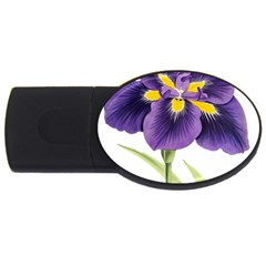 Lily Flower Plant Blossom Bloom Usb Flash Drive Oval (2 Gb) by Nexatart