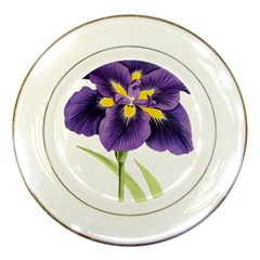 Lily Flower Plant Blossom Bloom Porcelain Plates by Nexatart