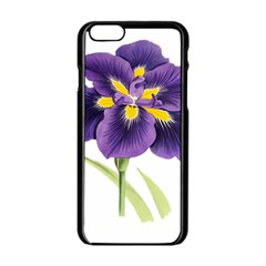 Lily Flower Plant Blossom Bloom Apple Iphone 6/6s Black Enamel Case by Nexatart