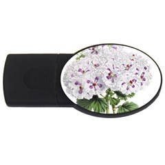 Flower Plant Blossom Bloom Vintage Usb Flash Drive Oval (4 Gb) by Nexatart