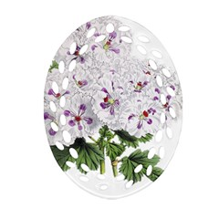 Flower Plant Blossom Bloom Vintage Oval Filigree Ornament (two Sides) by Nexatart