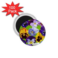 Spring Pansy Blossom Bloom Plant 1 75  Magnets (100 Pack)  by Nexatart
