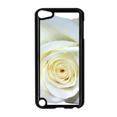 Flower White Rose Lying Apple Ipod Touch 5 Case (black) by Nexatart